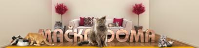 Chovateľské potreby a krmivá pre mačky